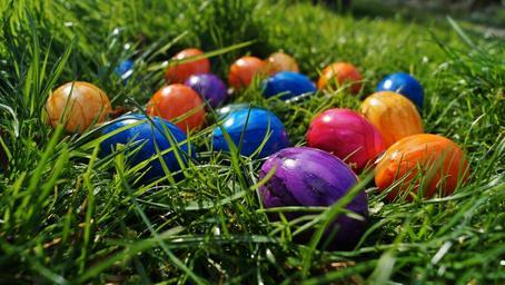 easter-eggs-color-eggs-in-the-grass-707703